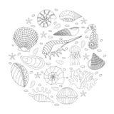 Set of seashells and starfish Royalty Free Stock Photo