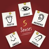 Set of senses icons on sticky notes Royalty Free Stock Image
