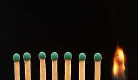 Set of seven green and one burning wooden matches Royalty Free Stock Images