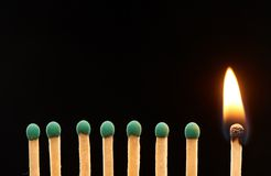 Set of seven green and one burning wooden matches Stock Image