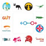 Set of sex store, cooking show, wushu, pinup, tele, healer, paragliding, croc, gut icons. Set Of 13 simple  icons such as sex store, cooking show, wushu, pinup Royalty Free Stock Photos