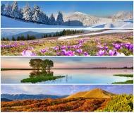 Set 4 sezonów krajobraz Obrazy Stock