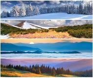Set 4 sezonów krajobraz Zdjęcie Stock