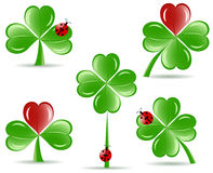 Set of   shamrocks with four lucky leaves Stock Photo