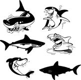 Set of sharks Royalty Free Stock Photos