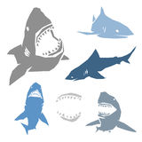 Set of Sharks Royalty Free Stock Images