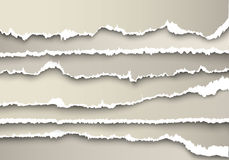 Set of sheets of paper torn gray Royalty Free Stock Image