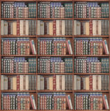 Set of shelves for books set in a surrounding frame or cabinet. Royalty Free Stock Photography