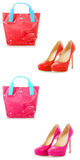 The set of shoes and bags isolated on white Stock Image