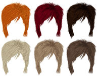Set of  short hairs  different colors . Royalty Free Stock Images