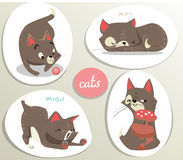 Set with siames kittens. Set with 4 cute cartoon kittens vector illustration