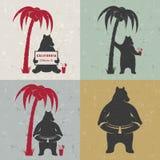 Set Sign Fun Bears Stock Images