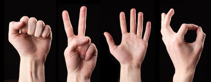 Set of signs hands. Isolated Stock Image