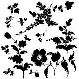 Set silhouette black flowers Royalty Free Stock Images