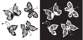 Set of silhouette butterflies collection Stock Images