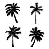 Set of silhouette coconut trees, natural sign, vector illustrati Royalty Free Stock Photo