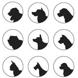 Set of silhouette dogs heads Royalty Free Stock Photography