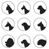 Set of silhouette dogs heads Royalty Free Stock Image