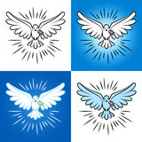 Set of silhouette of a flying dove with olive branch. White dove Royalty Free Stock Images