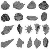 Set of silhouette shell icons Royalty Free Stock Photos