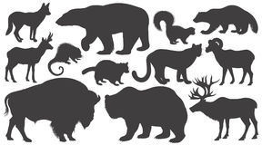 Set of silhouettes animals of North America. Black silhouettes animals of North America on white background set. Vector illustration art Stock Image