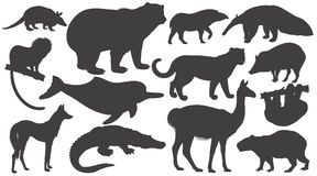 Set of silhouettes animals of South America. Royalty Free Stock Photography