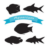 Set of silhouettes of aquarium fish Stock Image