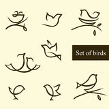 Set of silhouettes of birds. Set of birds./Illustration includes 8 silhuoettes of birds. The EPS format Stock Photos