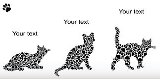 Set of silhouettes of cats from the cat tracks Stock Photo