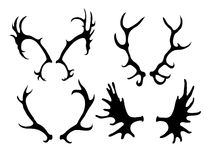 Set of silhouettes of deer and elk horns. Vector element for your creativity Royalty Free Stock Photos