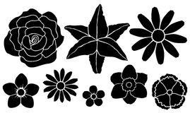 Set of silhouettes of flowers Royalty Free Stock Photography