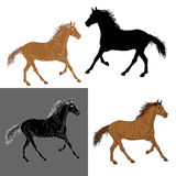 Set of silhouettes horse  Royalty Free Stock Images