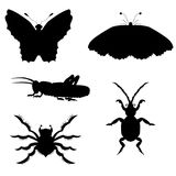 Set of silhouettes of insects. vector illustration. Drawing by hand. Royalty Free Stock Photos