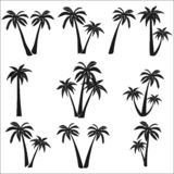 Set of silhouettes of palm trees