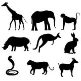 A set of silhouettes of wild animals, such as a mountain goat Stock Photo