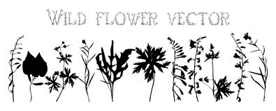 Set silhouettes of wild flowers vector Stock Photos