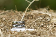 A set of silver rings sitting in some hay royalty free stock images