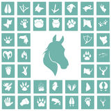Set of simple animals icons. Simple animals icons set for web and mobile design Stock Photo