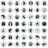 Set of simple animals icons. Simple animals icons set for web and mobile design Royalty Free Stock Photography