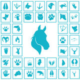 Set of simple animals icons. Simple animals icons set for web and mobile design Royalty Free Stock Photos