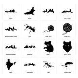 Set of chameleon, ant, india, koala, kentucky state, yarn ball, pennsylvania, haiti icons. Set Of 16 simple editable icons such as chameleon, ant, arkansas Royalty Free Stock Photo
