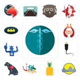 Set of hipaa, montain, pinapple, myth, service dog, ethernet, sports fan, chili cook off, bat icons. Set Of 13 simple editable icons such as hipaa, montain Royalty Free Stock Photos