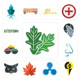 Set of oak leaf, , ripple, maple nose, spice, wolf, dustbin icons. Set Of 13 simple editable icons such as oak leaf, , ripple, maple nose, spice, wolf, dustbin Royalty Free Stock Images