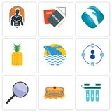 Set Of 9 simple editable icons such as water filter, pancake, focus group. Tidy, betta fish, pinapple, albatross, homework, fitness, can be used for mobile Stock Photography