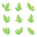 Set of simple green leaf Stock Photos