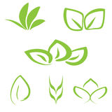 Set of simple green vegetable logo. Six isolated plant elements. Stock Photography