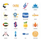 Set of golden rose, oval, shooters, pomelo, uae flag, airplane front, ostrich, cricket, tucan icons. Set Of 16 simple  icons such as golden rose, oval, pen nib Stock Images