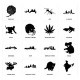 Set of india, raccoon, moose head, kentucky state, arkansas, marijuana leaf, ninja, ant, yarn ball icons. Set Of 16 simple  icons such as india, raccoon Royalty Free Stock Image