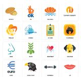 Set of lip, dumbbell, euro, heartbeat, nose, id card, trolley, sea shell, potato icons. Set Of 16 simple  icons such as lip, dumbbell, eagle head, euro, dog face Stock Photos