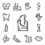 Set of Long Nail, Human Lips, Bronchioles, Foot Bones, Hip Bone, Finger, Hand Palm, Tooth and Gums icons. Set Of 13 simple  icons such as Long Nail, Human Lips Stock Photography